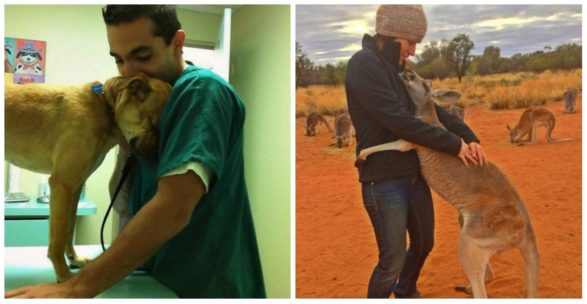 14 animals that have been rescued by humans and who thank them in their own way
