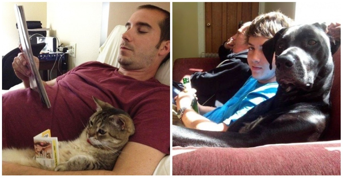 These 25 pets are like their masters